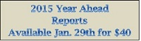 2015 Year Ahead Reports for Sale (147x47)